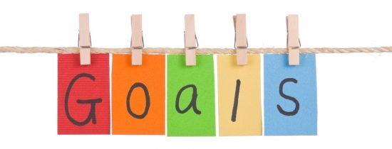 2016 Goals Assessment